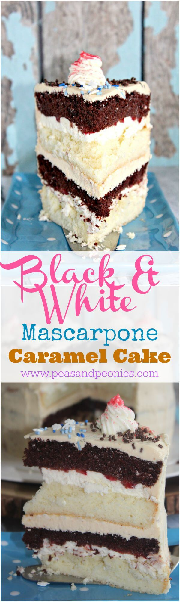 Black and White Cake with Mascarpone