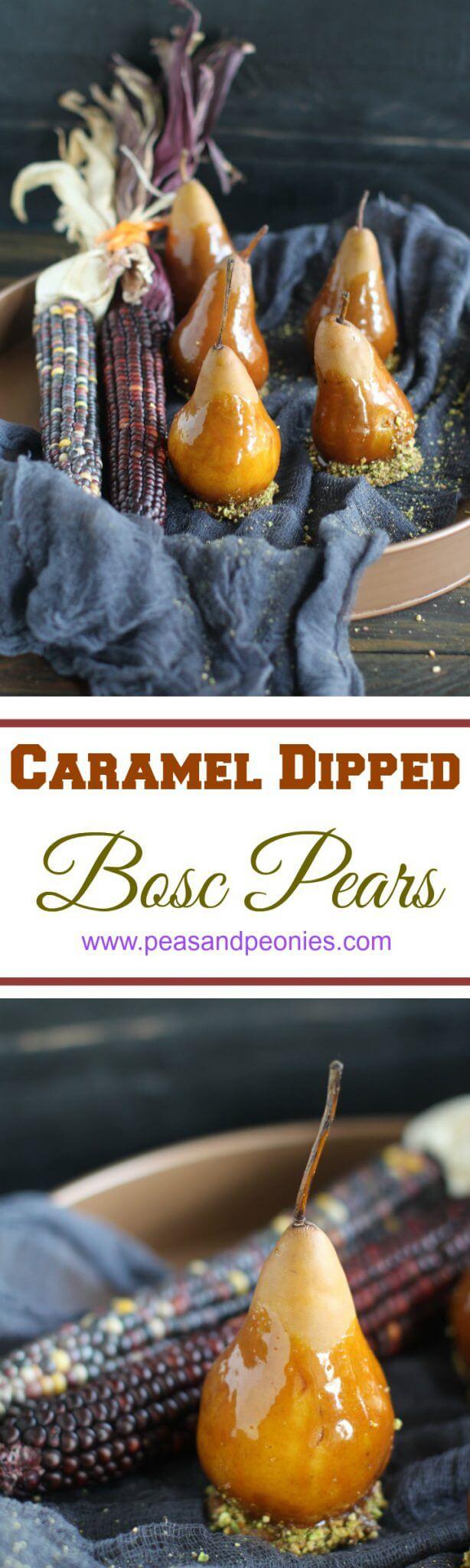 Caramel Dipped Bosc Pears