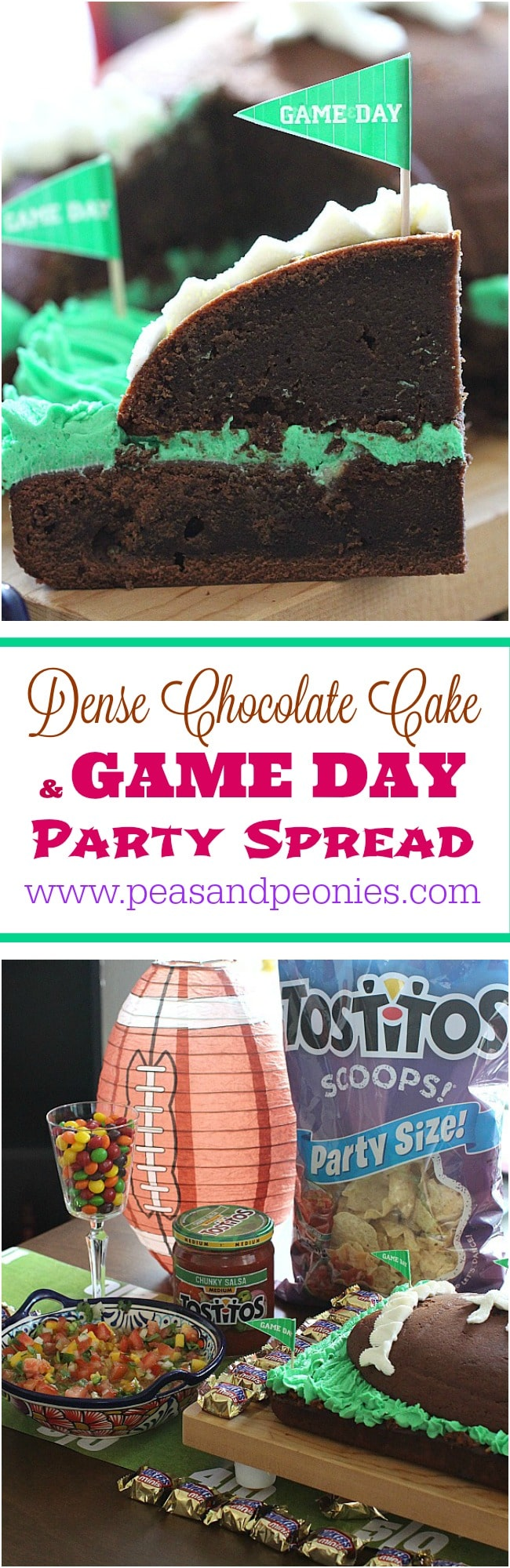 dense chocolate cake PIN Collage