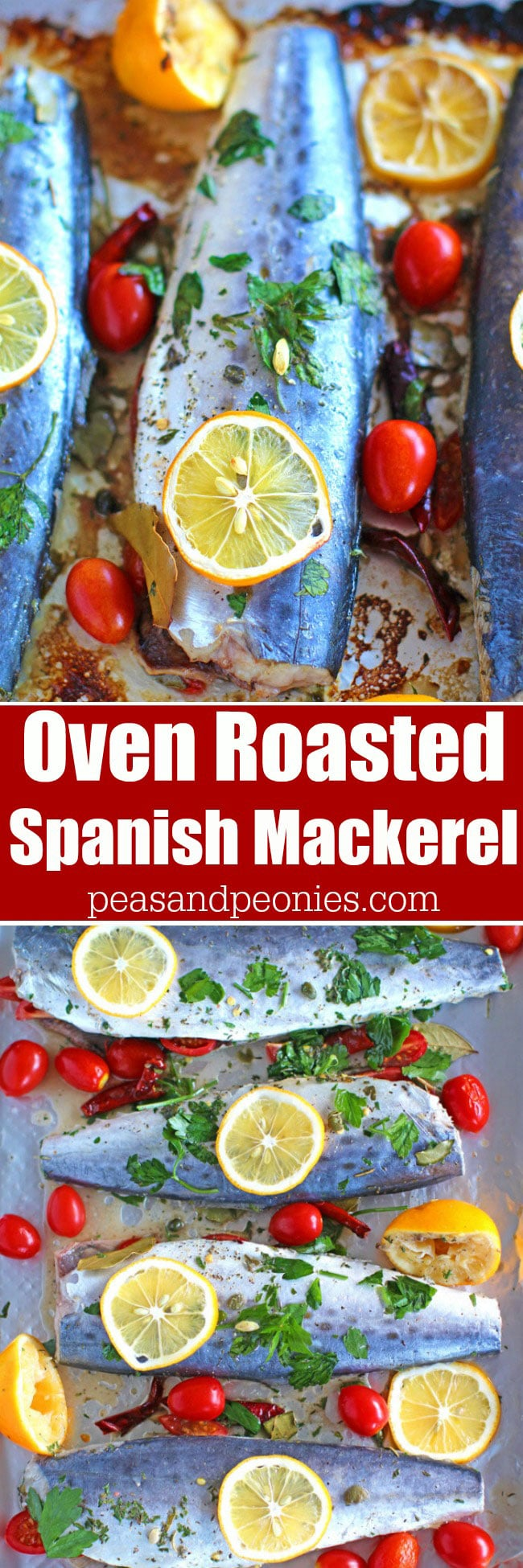 Oven Roasted Spanish Mackerel marinated with grape tomatoes, capers, dried chili peppers and lemon is one very tasty and easy meals to make.