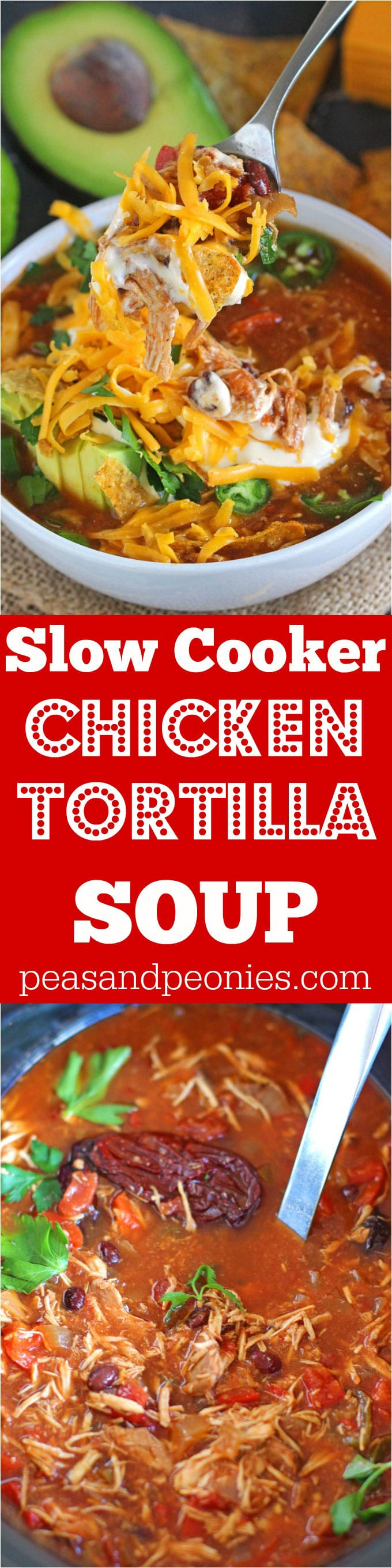 Slow Cooker Chicken Tortilla Soup — Spicy, easy, and bursting with flavor,  this