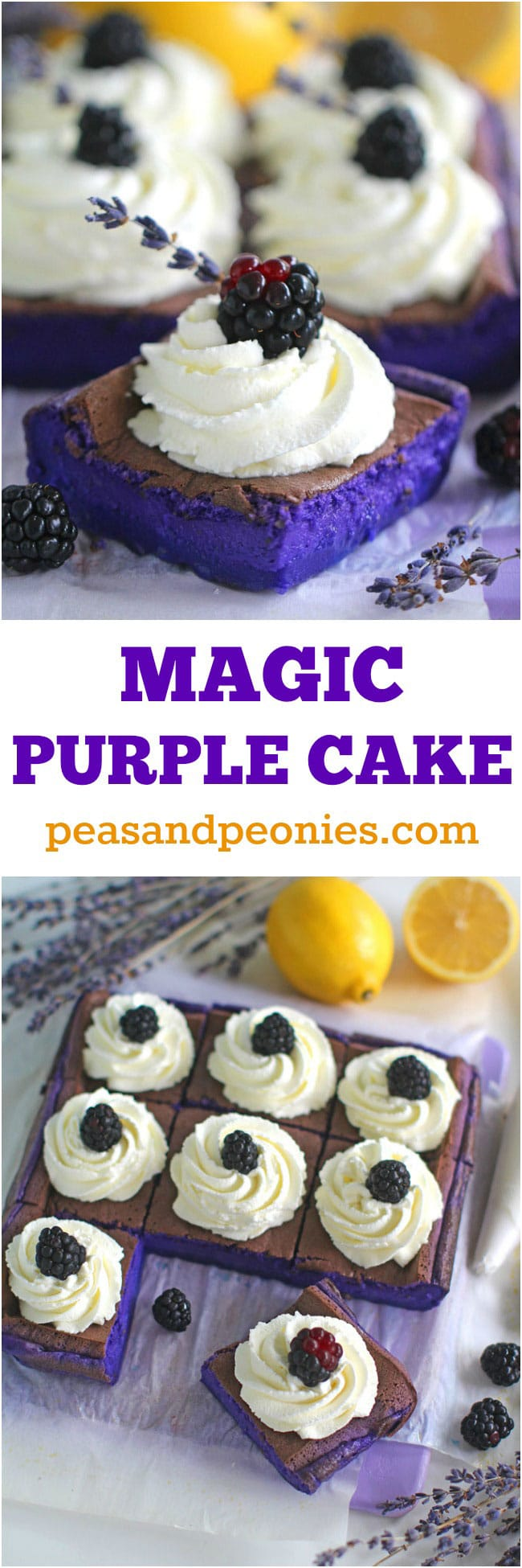 Magic Purple Cake with lemon and lavender flavor is incredibly easy to make, delicious and stunning. One batter, three magic purple layers!