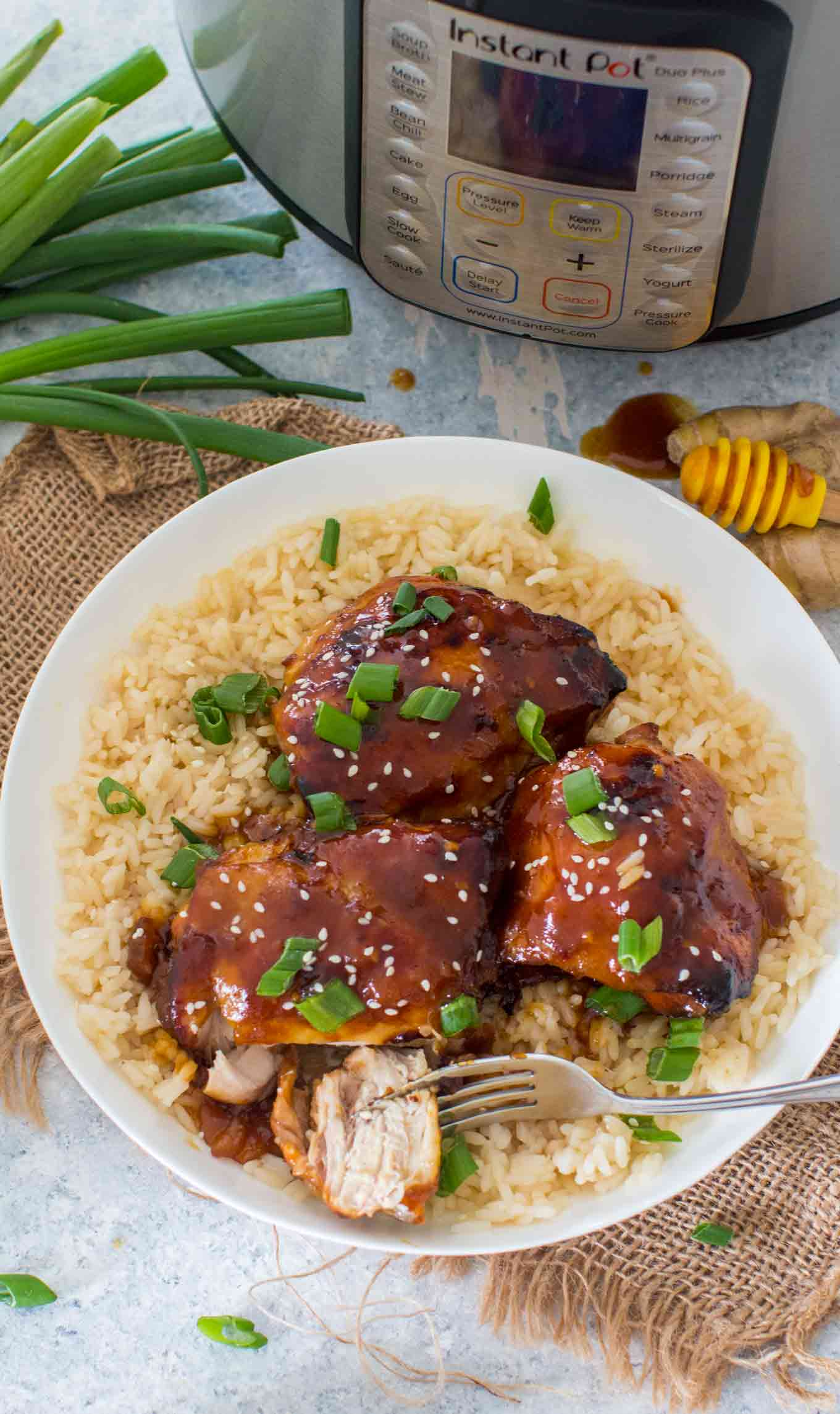 Best Instant Pot Honey Garlic Chicken Thighs