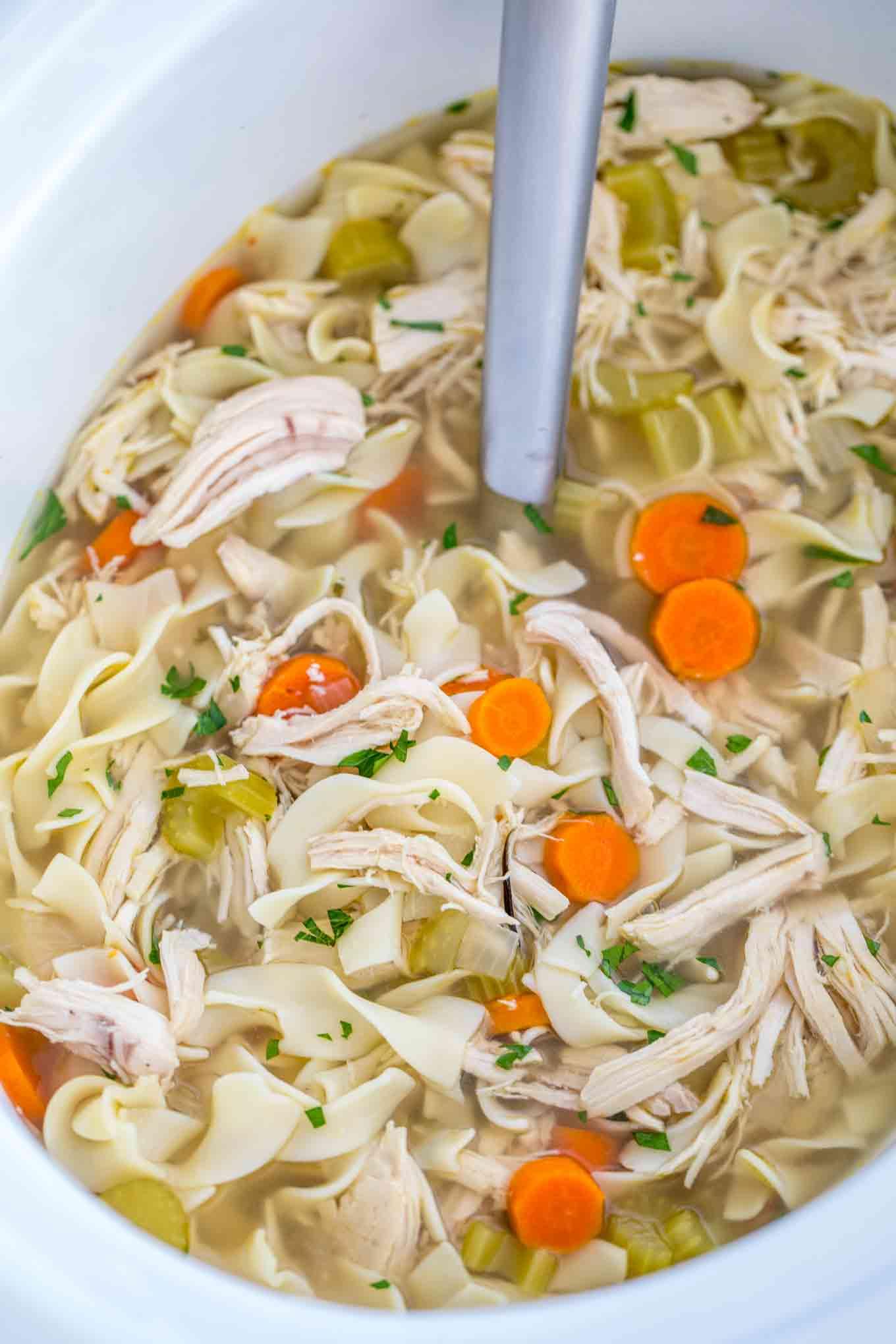 Simple chicken noodle soup crock pot recipe