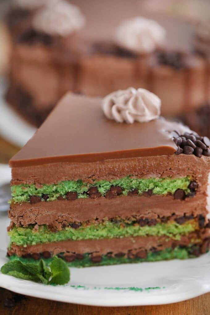 Best Mint Chocolate Chip Cake