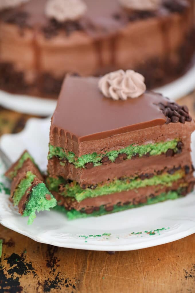 Mint Chocolate Chip Cake Slice
