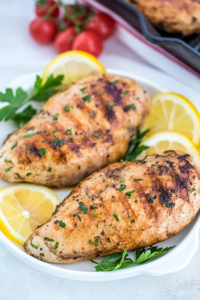 Grilled chicken breasts on a white plate photo.