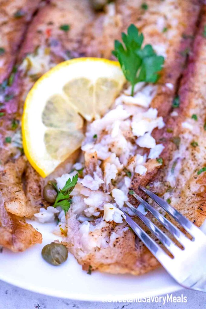 flaked Swai fish on a plate
