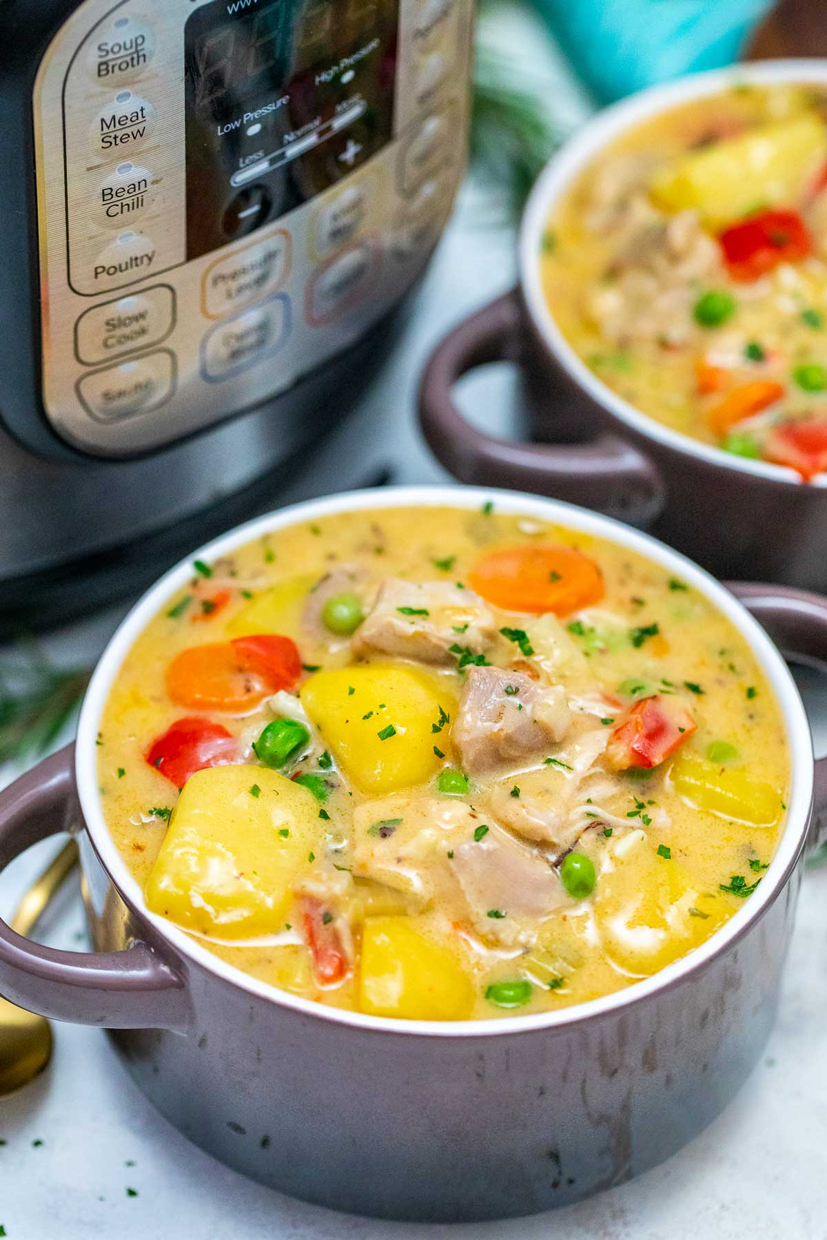 Instant Pot Chicken Stew Sweet And Savory Meals