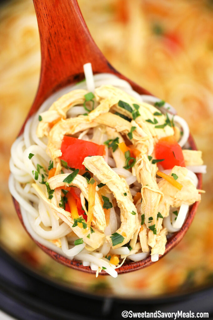 Image of crockpot asian chicken noodle soup.