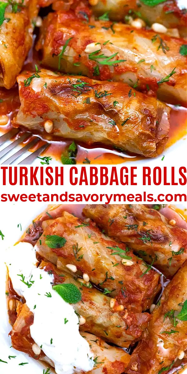 easy turkish cabbage rolls pin