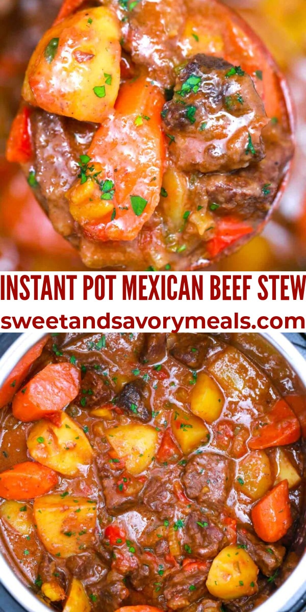 easy instant pot mexican beef stew pin