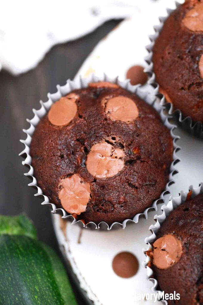 chocolate zucchini muffin with chocolate chips