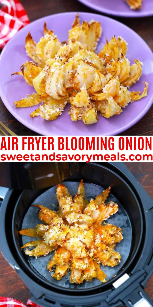 easy air fryer blooming onion pin