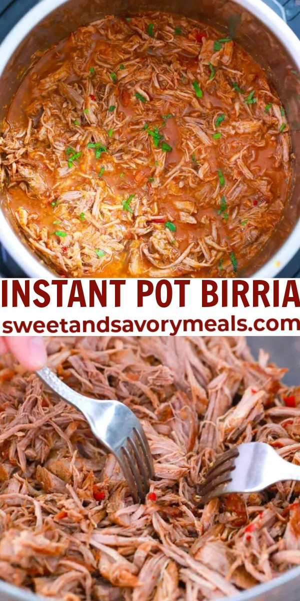 easy instant pot birria pin