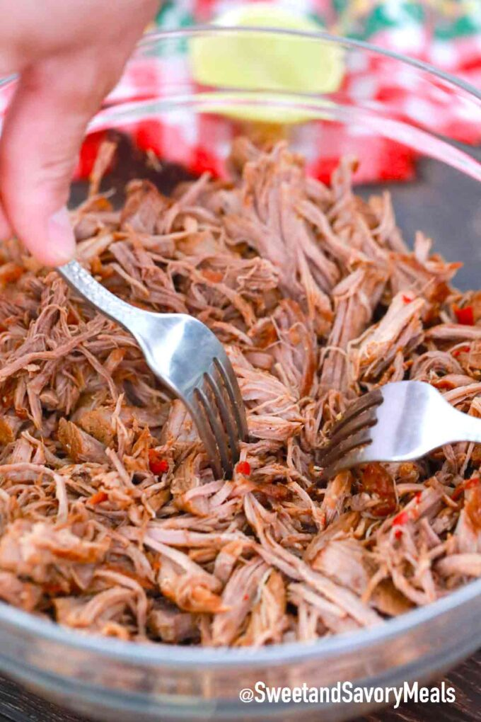 shredding instant pot Birria in a large bowl