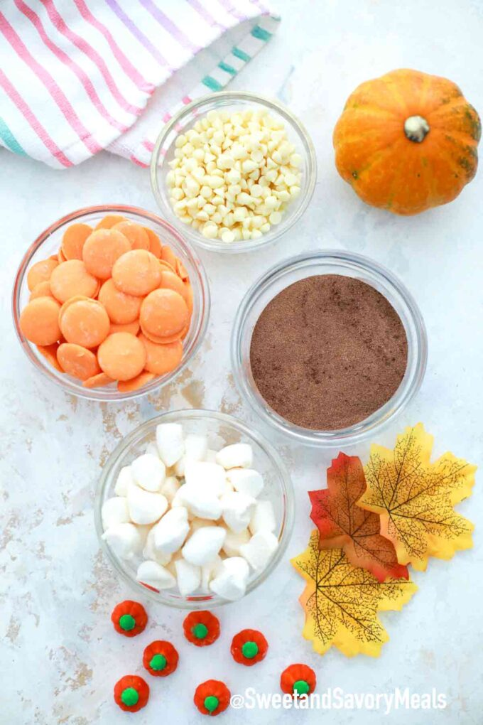 pumpkin spice hot cocoa bombs ingredients on a table