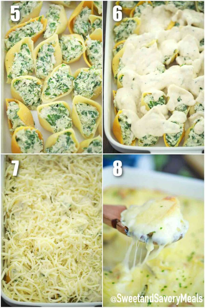 photo collage of steps how to make chicken Alfredo stuffed shells